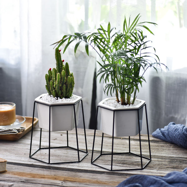 Hexagon Stand & Planter (black)