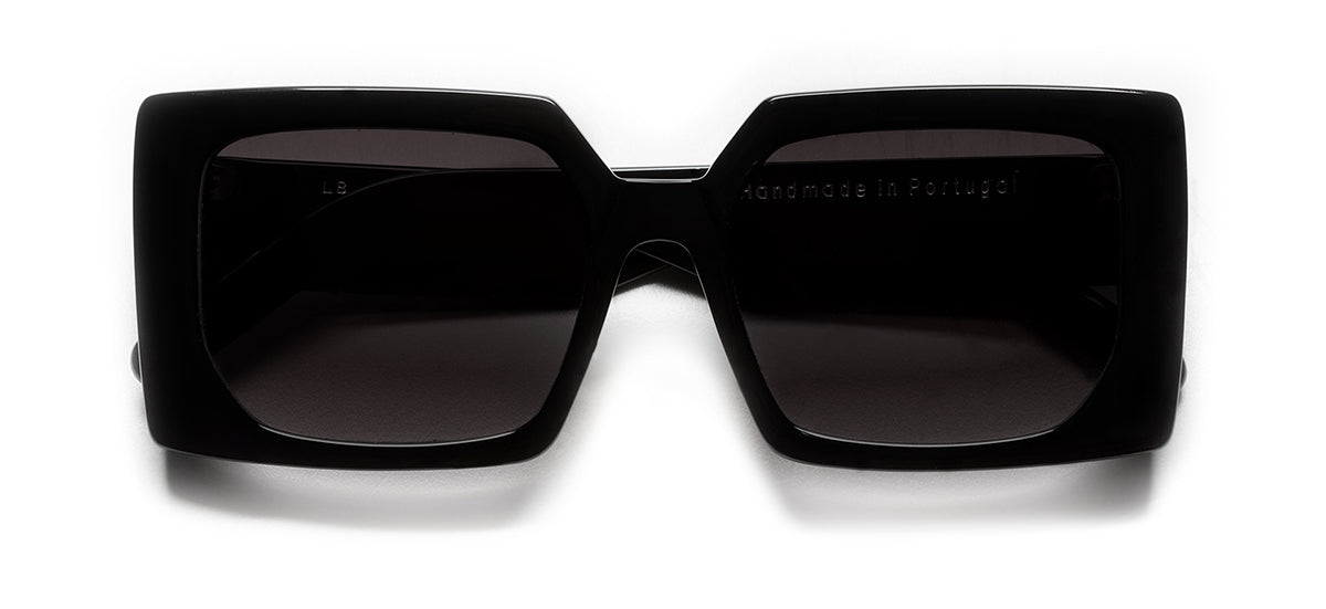 Sunglasses 18-09 C02
