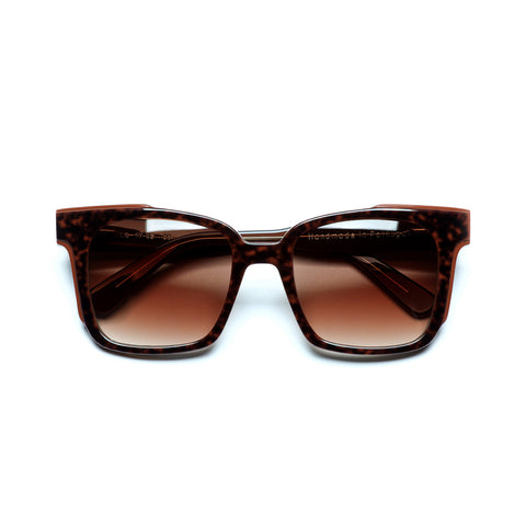 Sunglasses 17-02 C06