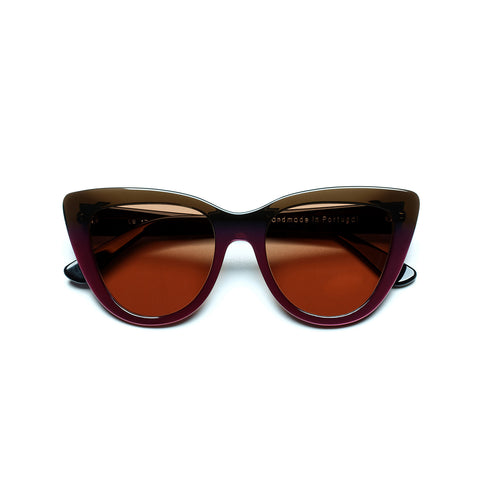 Sunglasses 17-06 C14