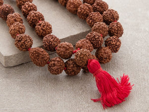 How to wear Rudraksha ?