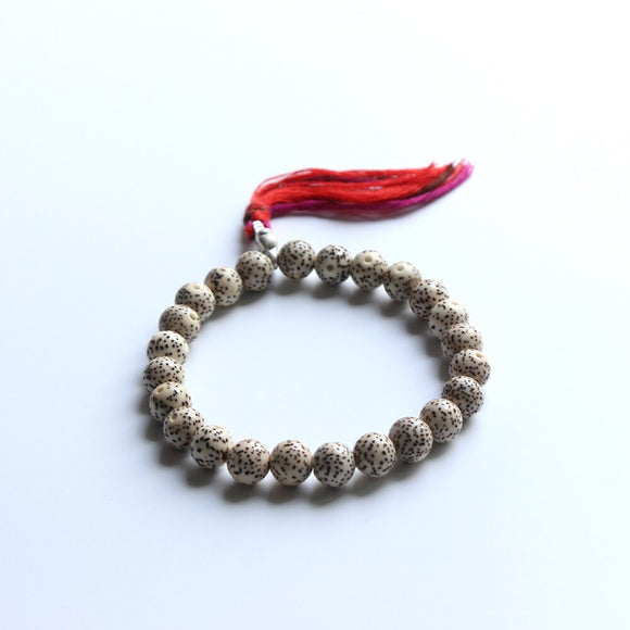 Daemonorops Margaritae's Seeds Mala for Protection