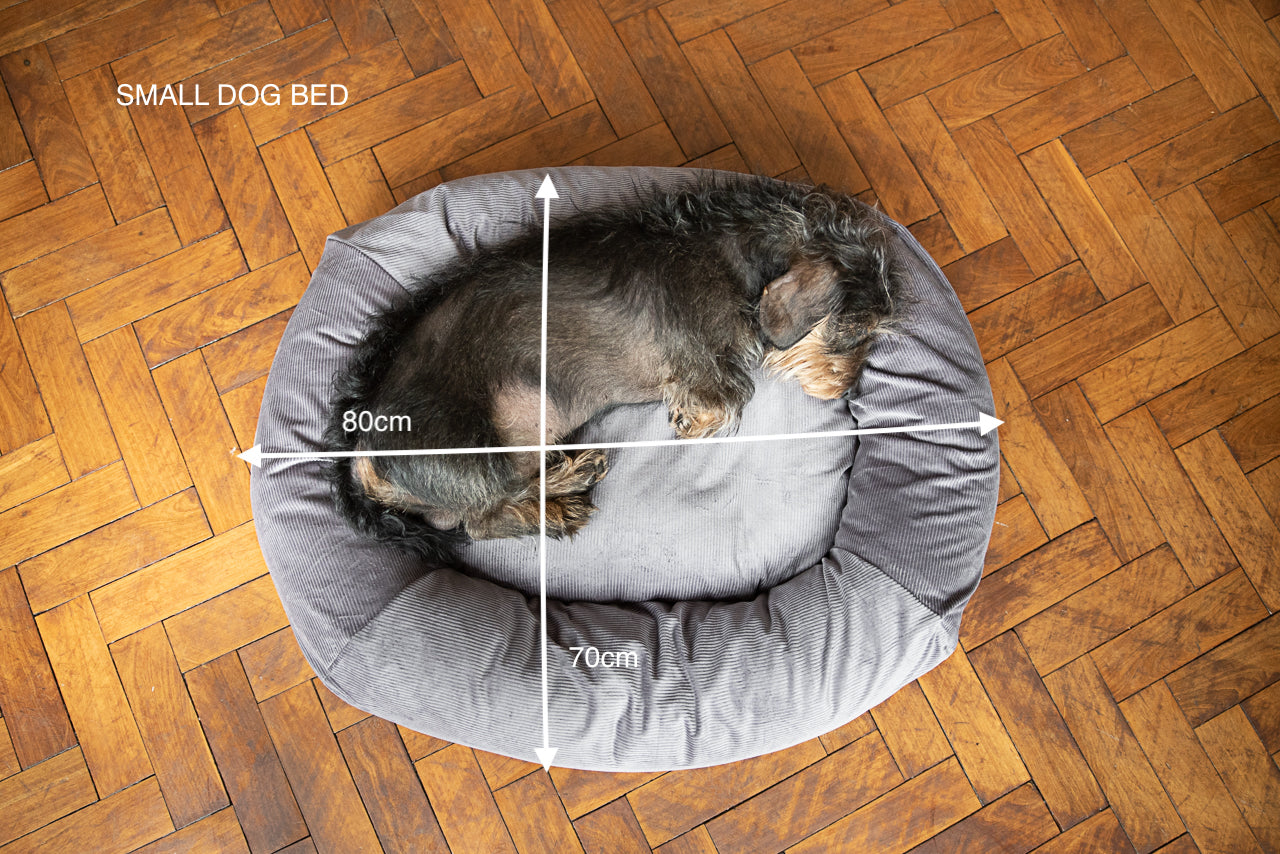 WHAT SIZE BED FOR MY DOG?