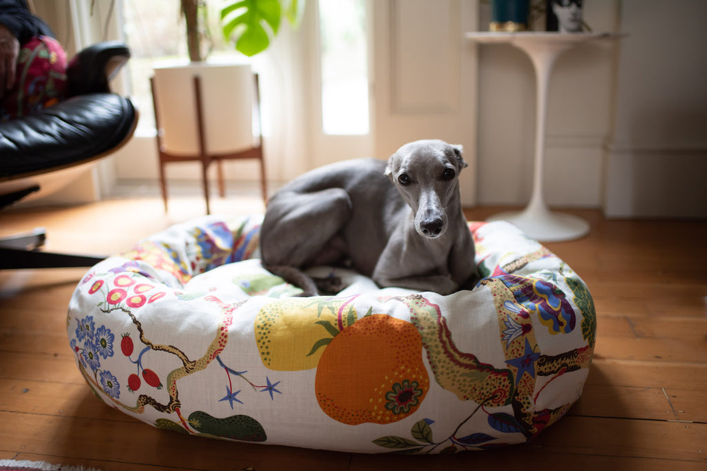 comfy dog bed for whippet