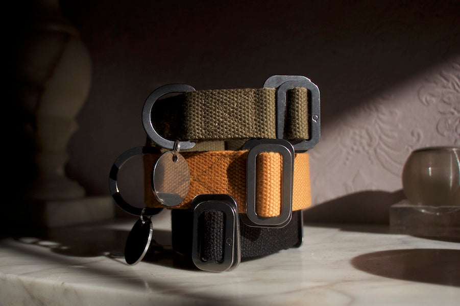 comfy dog collars