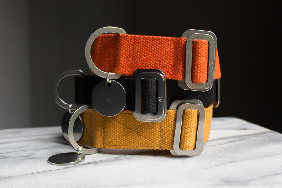 durable washable dog collars