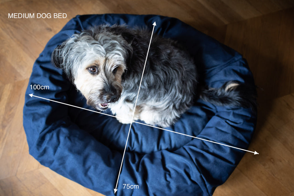 medium size denim dog bed