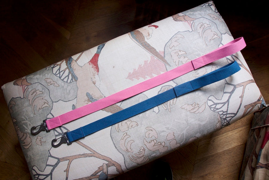 short pink and blue dog leads