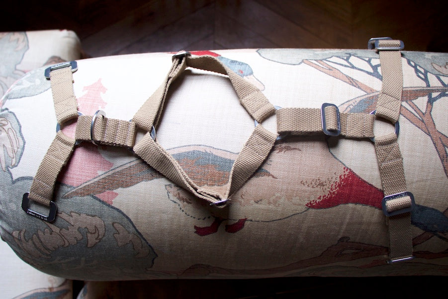 brown sandy harness