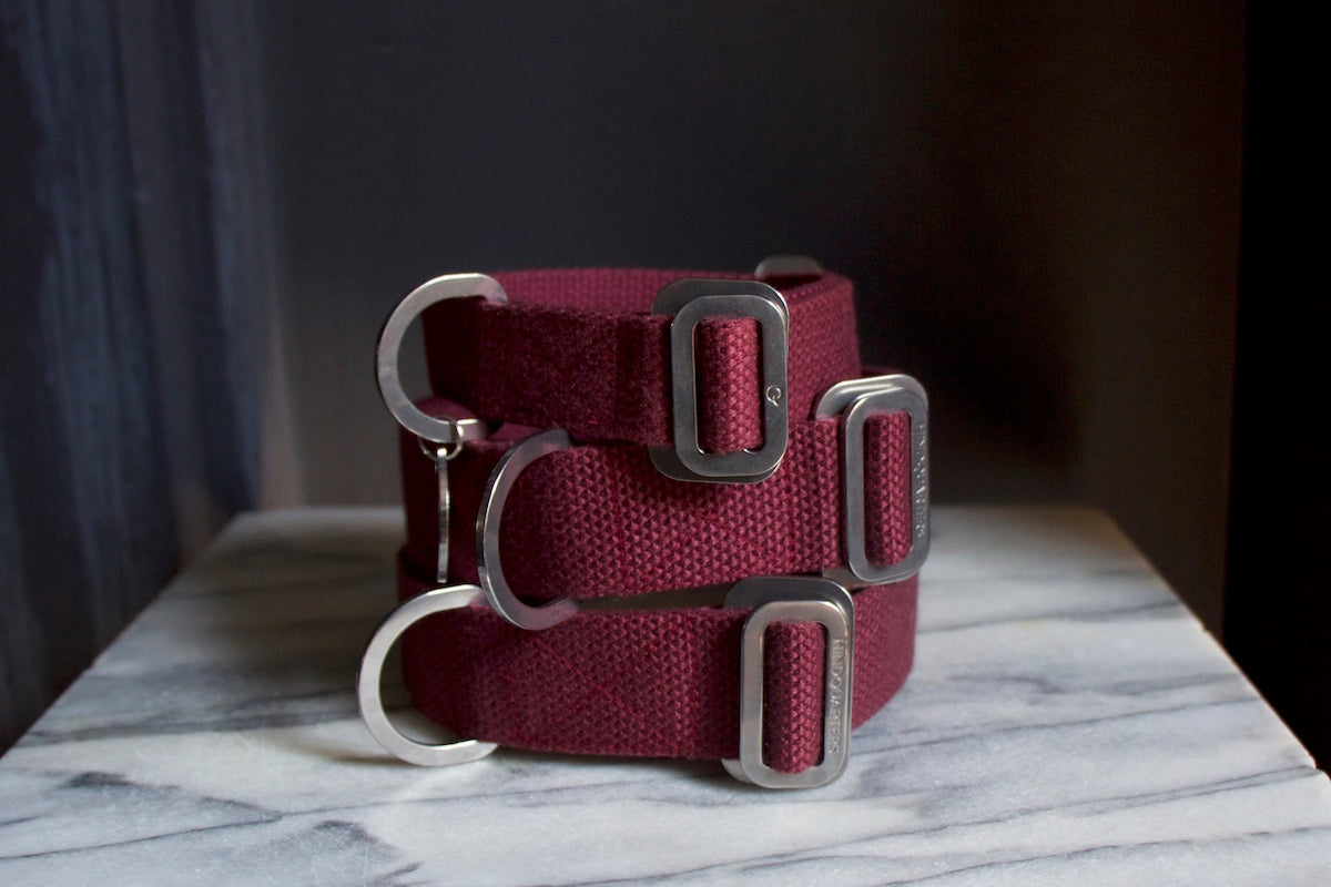 burgundy dog collars