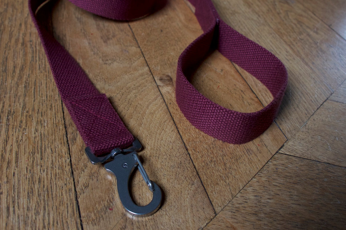 burgundy lead with steel clip