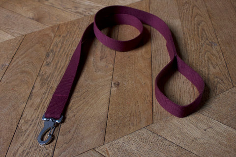 burgundy leash