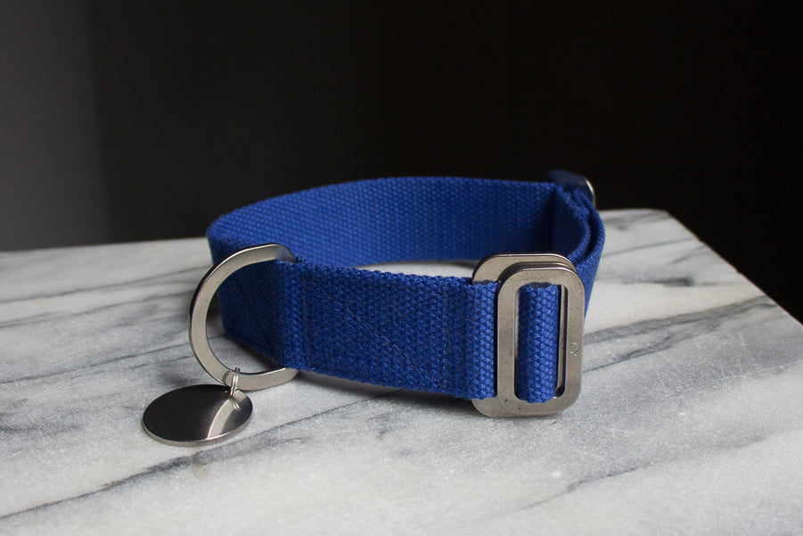 cobalt blue dog collar medium size