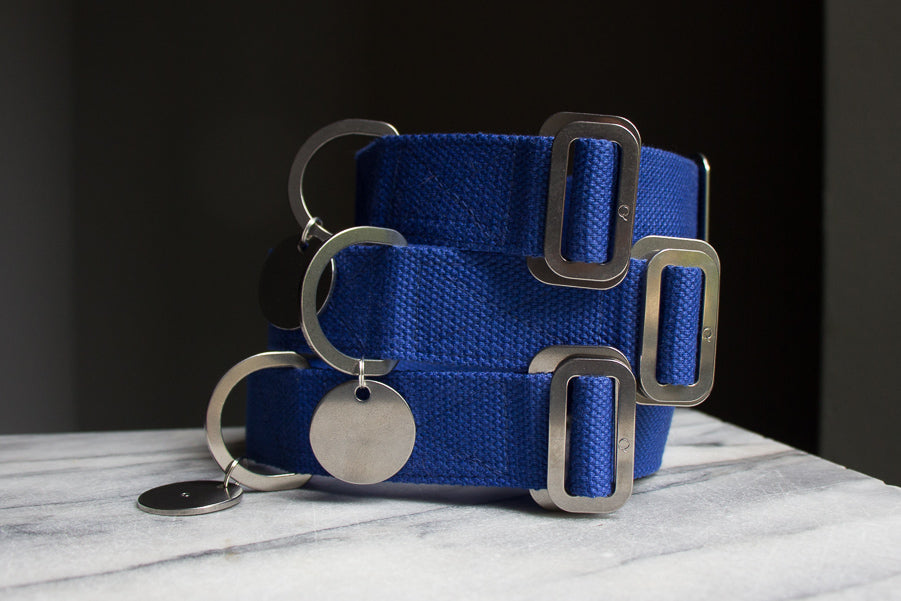 cobalt blue dog collars