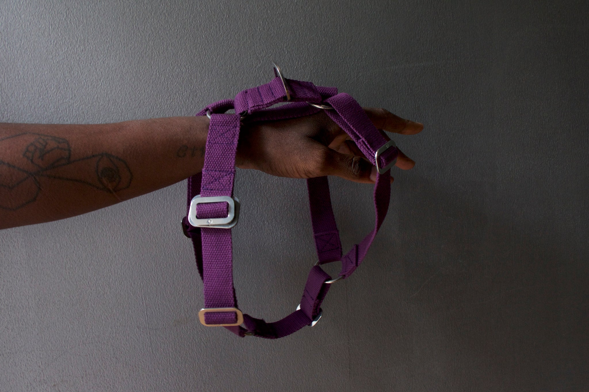 comfy purple harness for dog