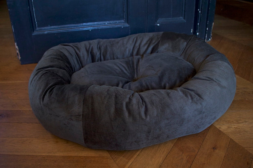 comfy green dog bed