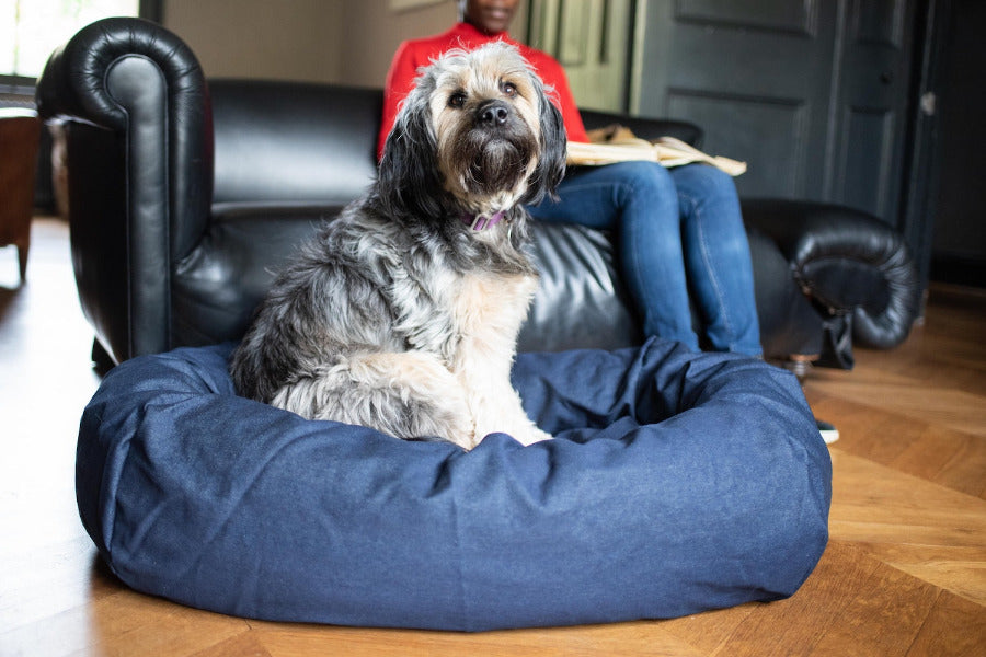 Indigo Denim Dog Bed