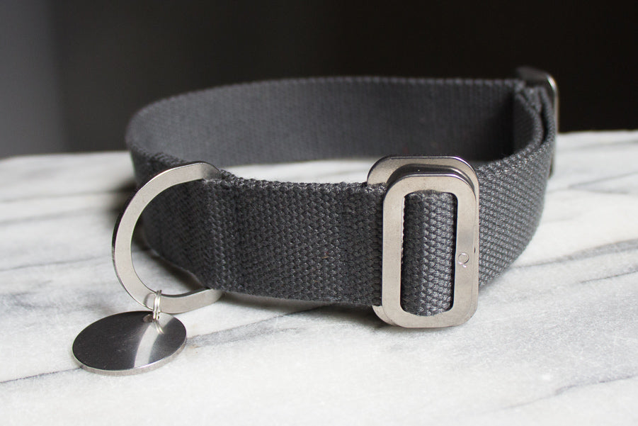 grey cotton dog collar