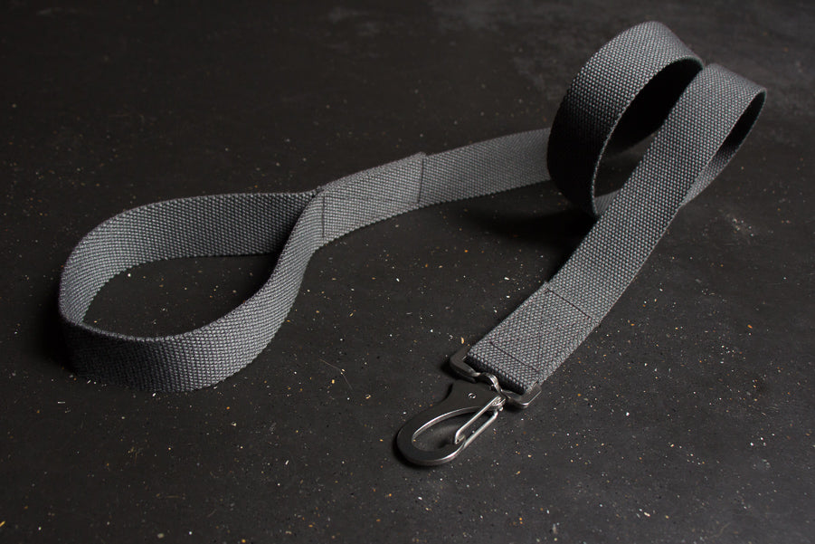 grey dog lead