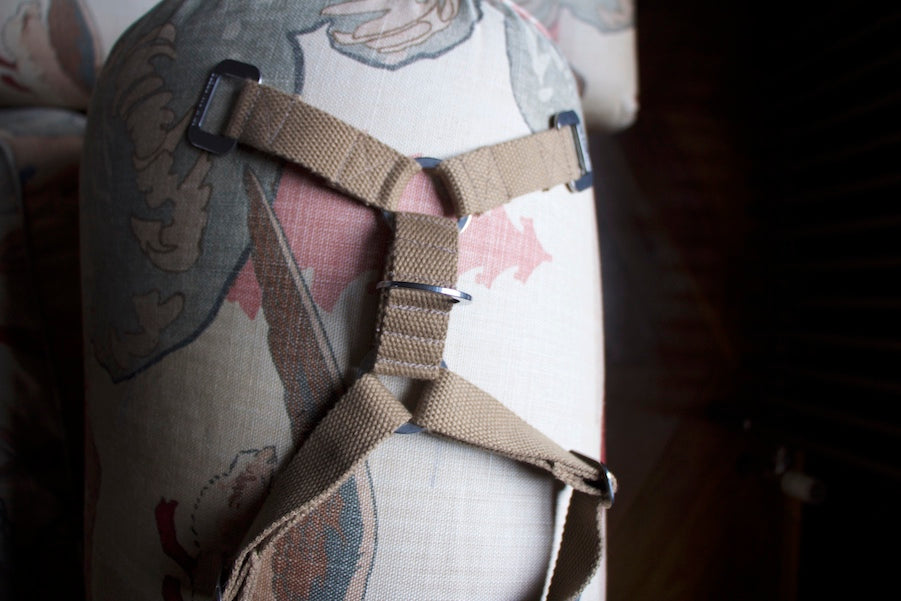 harness with top clip