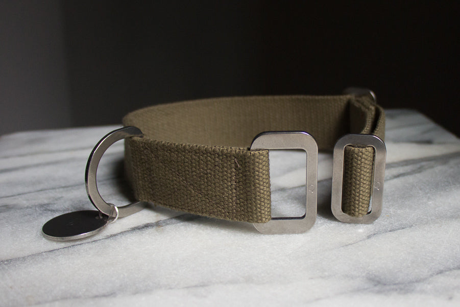 khaki collar with steel