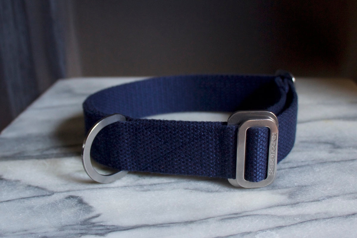 navy collar for dog