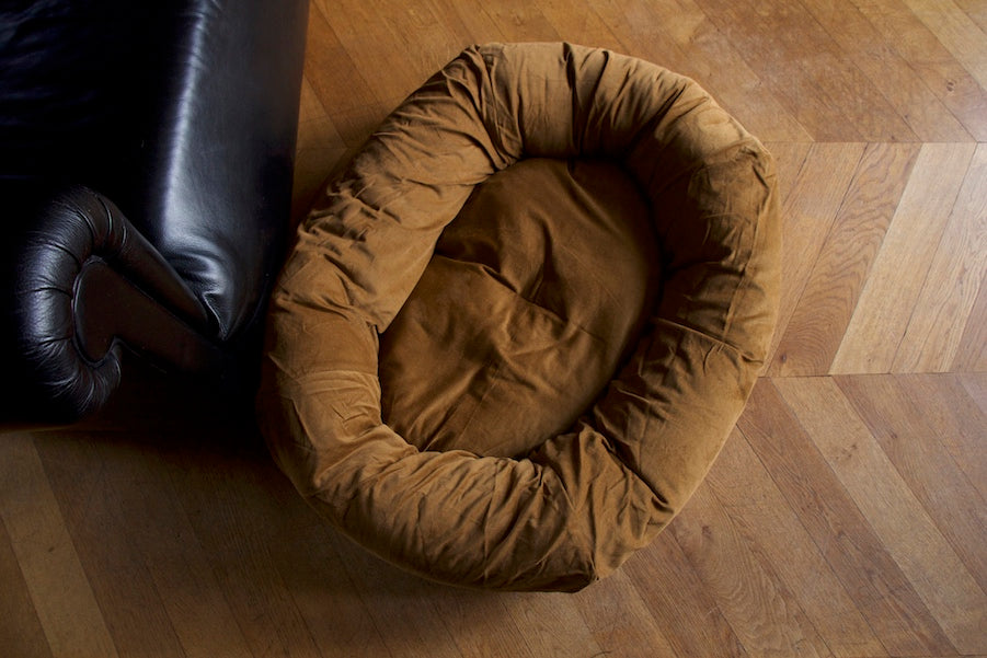 nice brown dog bed