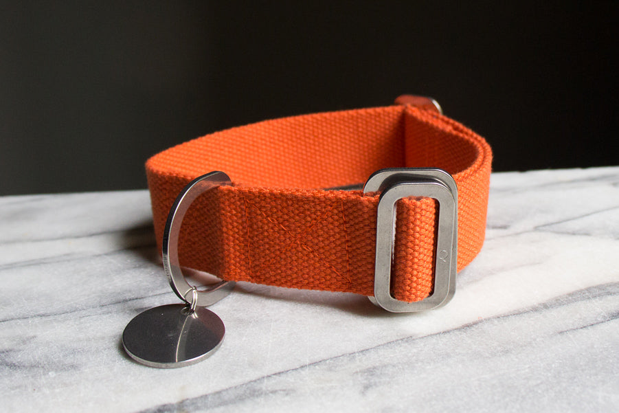 orange cotton dog collar