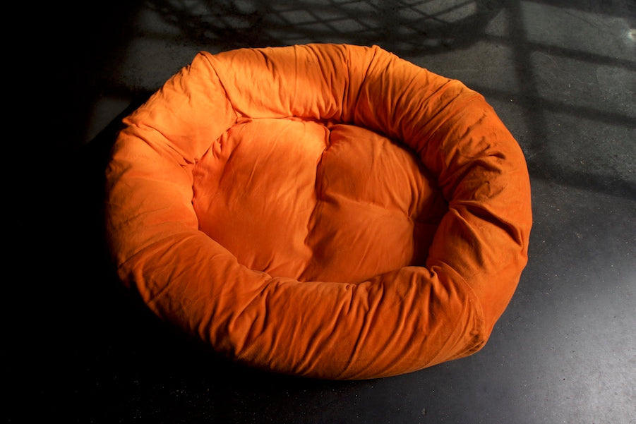 orange moleskin dog bed