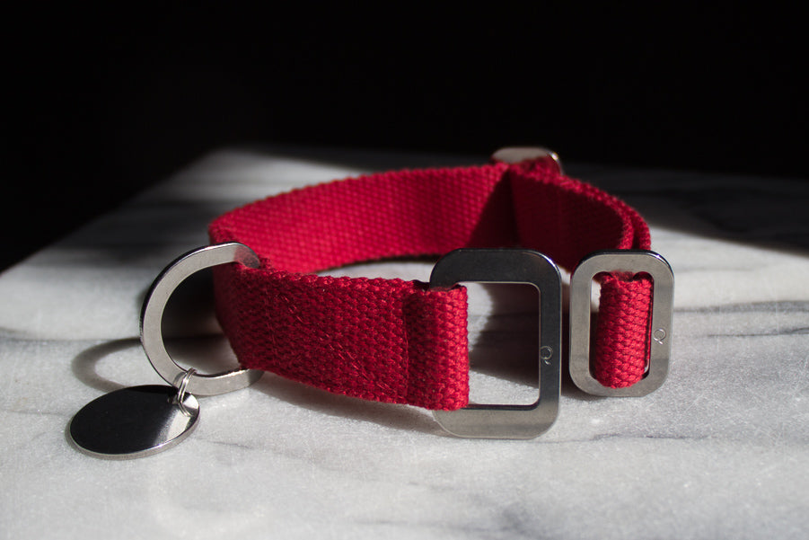 red collar with steel metalwork