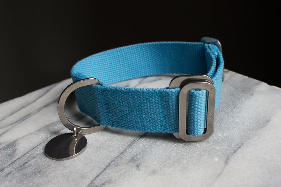 sky blue dog collar