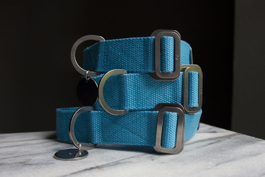sky blue dog collars