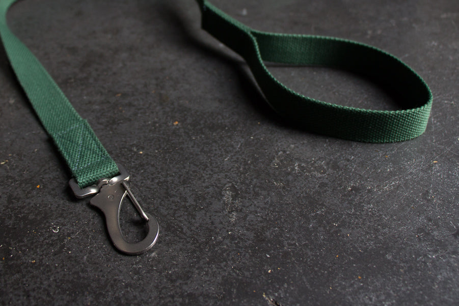 slim green dog lead with comfy handle