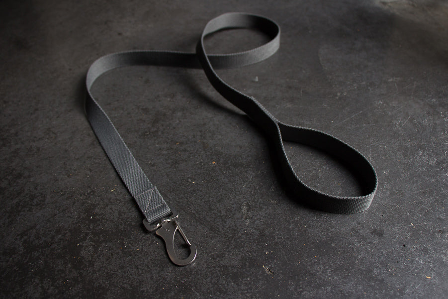 slim grey dog lead