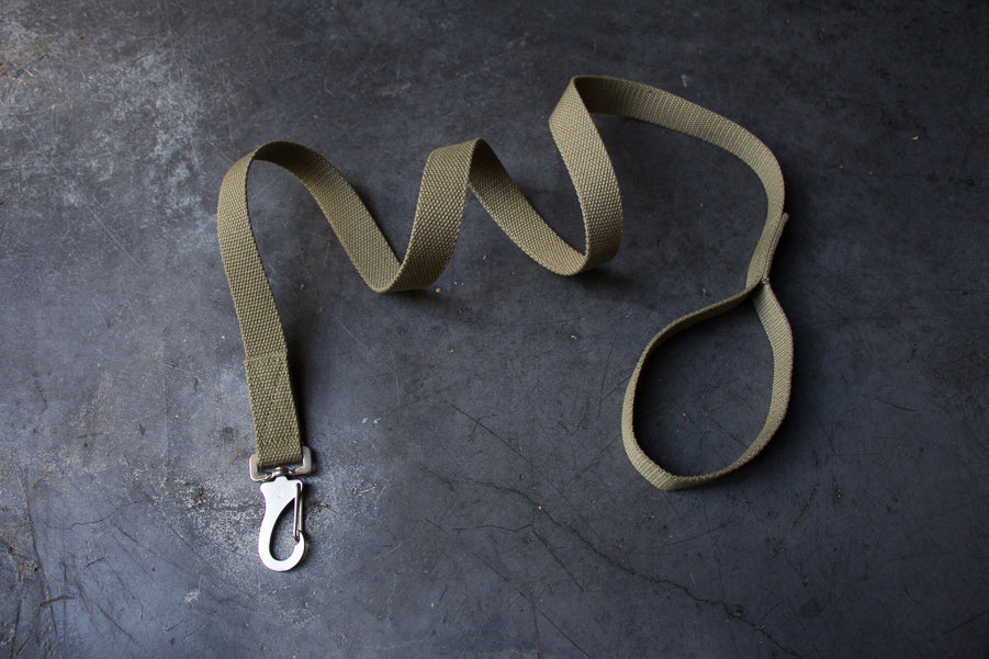 slim khaki dog lead