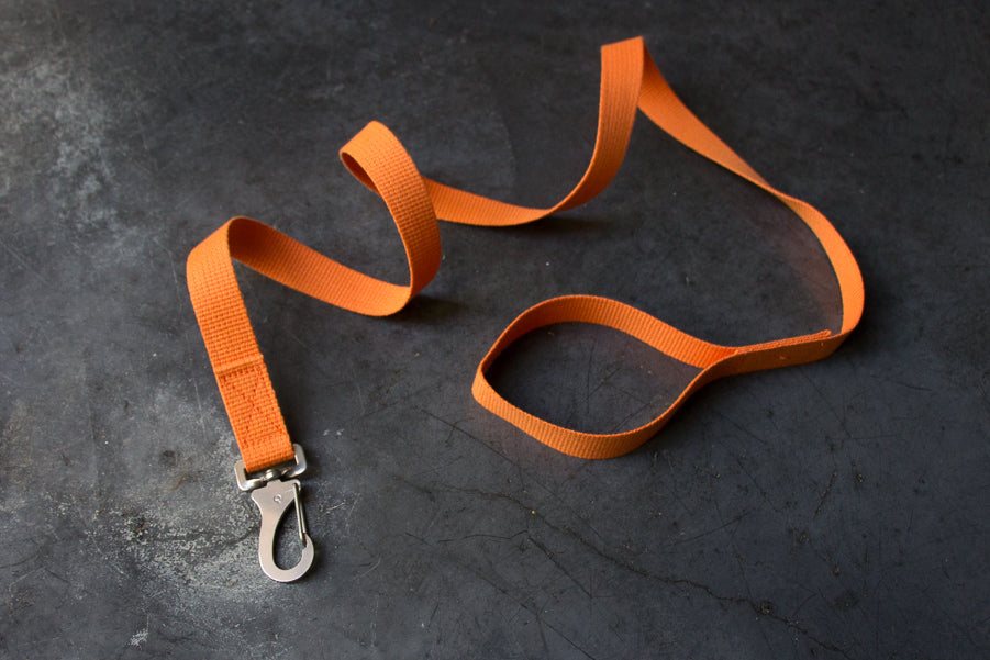 slim orange dog lead