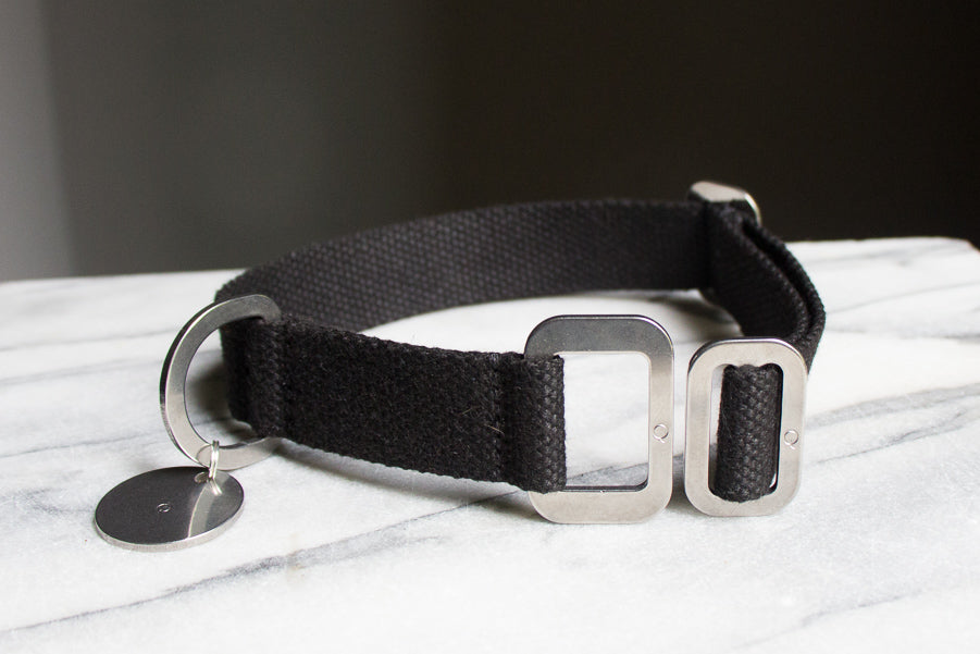 black dog collar with steel