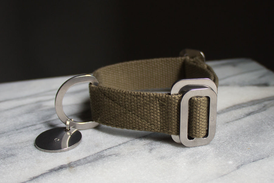 small khaki dog collar