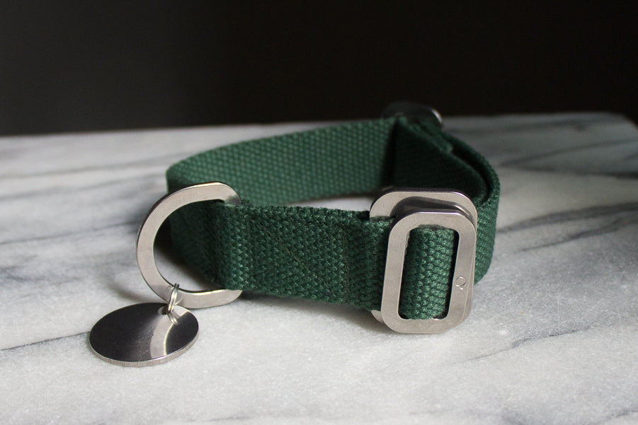XS green dog collar