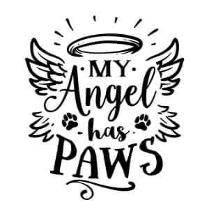 My Angel has paws Decal