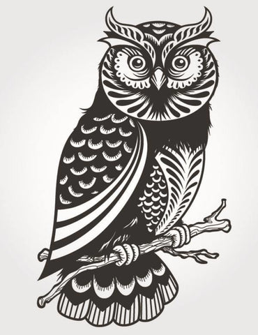 Hoot Owl Decal