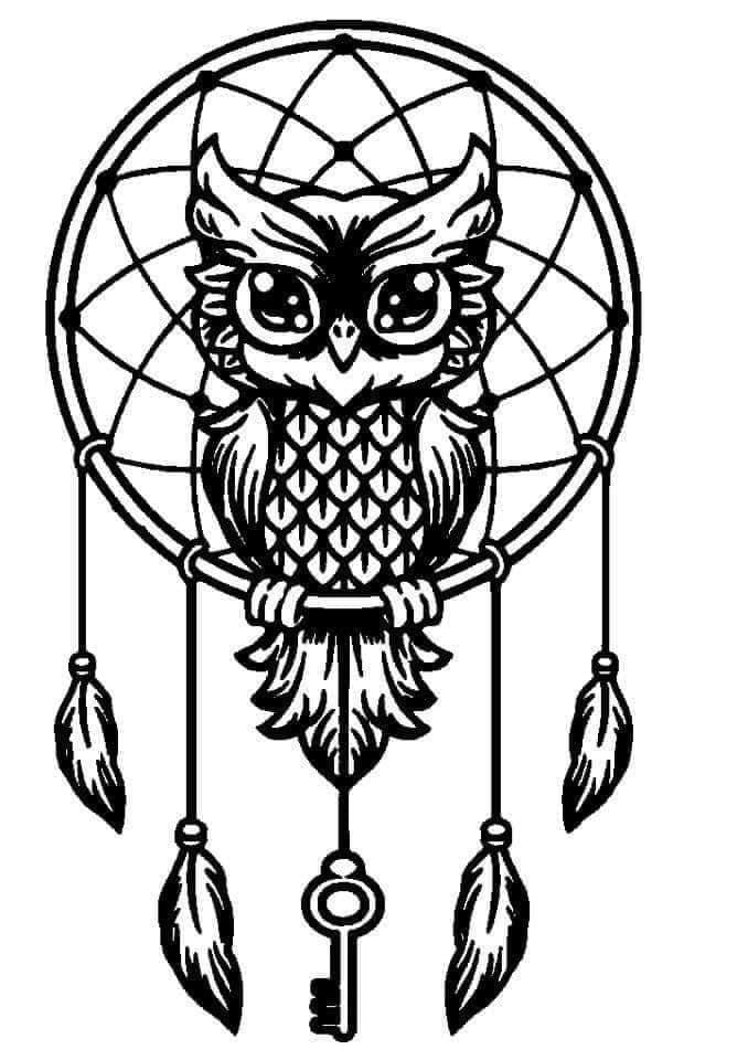 Owl Dream catcher decal