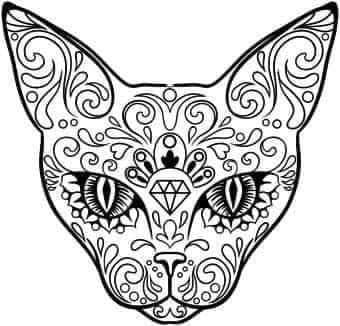 Mandala Cat Car decal .
