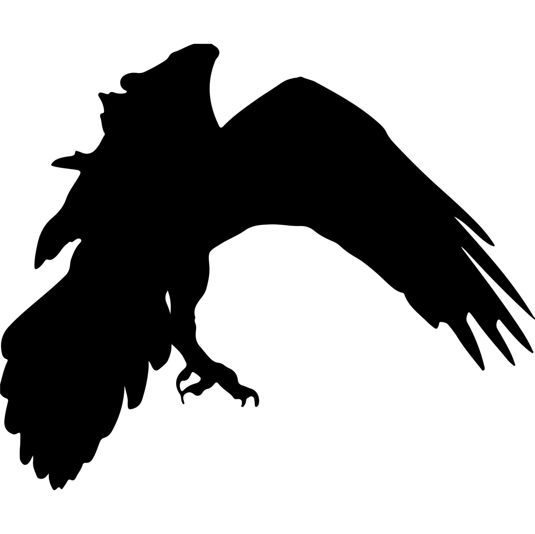 Viking Bird of Prey decal