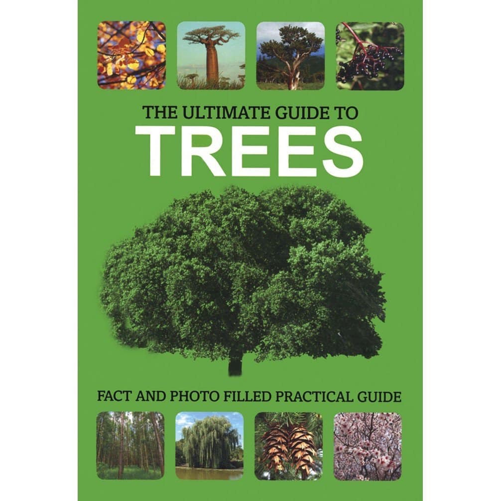 The Ultimate Guide to Trees
