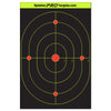 12x18 Inch Bullseye Target with Reactive Background