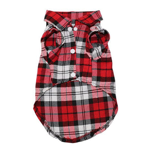 Dog Shirts - Plaid Chihuahua Dog Summer Shirt