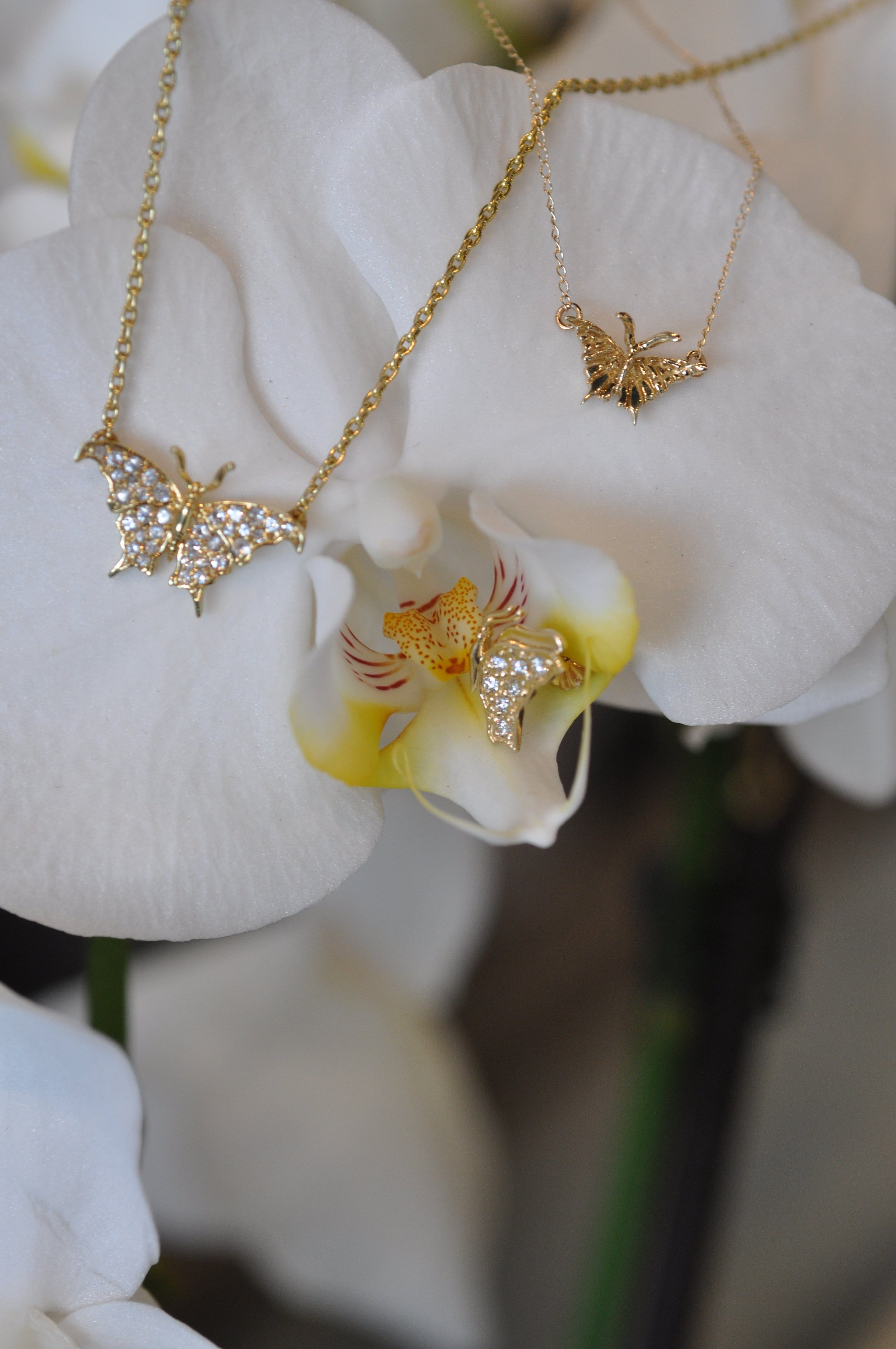 Small Butterfly Yellow Gold Necklace - Curated Los Angeles