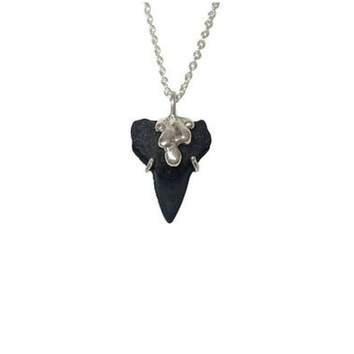 Shark Tooth Fossil Silver Pendant Necklace