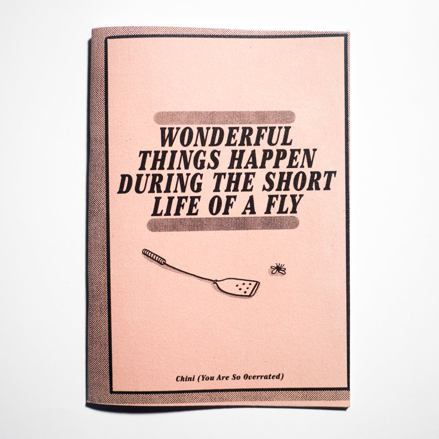 CHINI OVERRATED | Wonderful Things Happen During The Short Life of a Fly